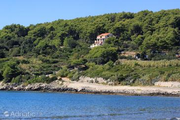 Property Lumbarda (Korčula) - Accommodation 4418 - Apartments with sandy beach.