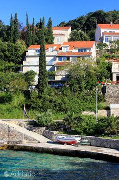 Property Medvinjak (Korčula) - Accommodation 4439 - Apartments near sea with pebble beach.