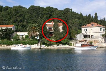 Property Korčula (Korčula) - Accommodation 4451 - Apartments near sea.
