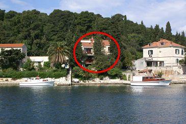 Obiekt Korčula (Korčula) - Zakwaterowanie 4451 - Apartamenty blisko morza.