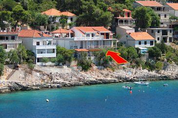 Obiekt Zavalatica (Korčula) - Zakwaterowanie 4461 - Apartamenty blisko morza.