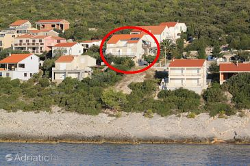 Property Zavalatica (Korčula) - Accommodation 4482 - Apartments near sea.