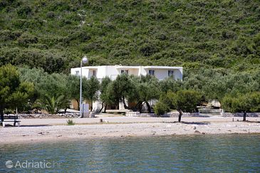 Property Drače (Pelješac) - Accommodation 4529 - Apartments near sea with pebble beach.