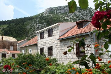 Property Trstenik (Pelješac) - Accommodation 4567 - Apartments near sea with pebble beach.