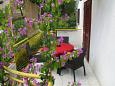 Terrace - Apartment A-4584-d - Apartments Ivan Dolac (Hvar) - 4584