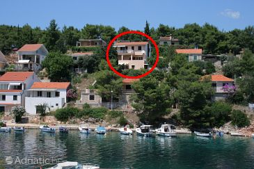 Property Basina (Hvar) - Accommodation 4620 - Apartments near sea with pebble beach.