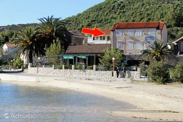 Property Slano (Dubrovnik) - Accommodation 4744 - Apartments near sea with pebble beach.