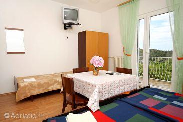 Studio flat AS-4765-b - Apartments and Rooms Cavtat (Dubrovnik) - 4765