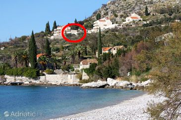 Soline, Dubrovnik, Property 4766 - Apartments and Rooms u Hrvatskoj.