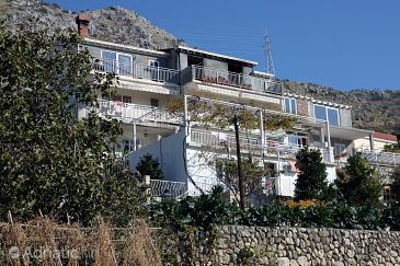 Property Plat (Dubrovnik) - Accommodation 4776 - Apartments with pebble beach.