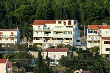 Property Dubrovnik (Dubrovnik) - Accommodation 4779 - Apartments with pebble beach.