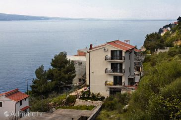 Property Zavode (Omiš) - Accommodation 4873 - Apartments near sea with pebble beach.
