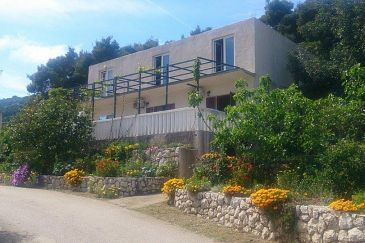 Property Saplunara (Mljet) - Accommodation 4907 - Apartments and Rooms near sea.