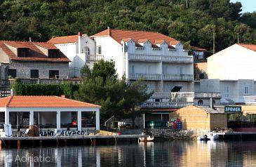 Property Polače (Mljet) - Accommodation 4911 - Apartments near sea.