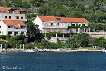 Property Soline (Mljet) - Accommodation 4920 - Apartments near sea.