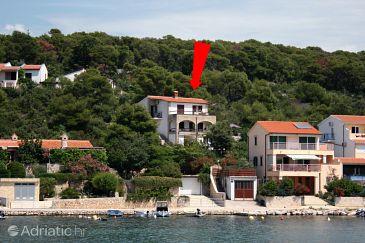Property Tisno (Murter) - Accommodation 5142 - Apartments near sea.