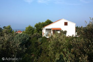 Property Maslinica (Šolta) - Accommodation 5177 - Apartments with pebble beach.