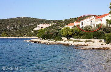 Maslinica, Šolta, Property 5212 - Apartments blizu mora.
