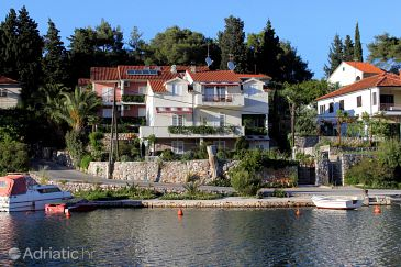 Property Vrboska (Hvar) - Accommodation 541 - Apartments near sea with rocky beach.