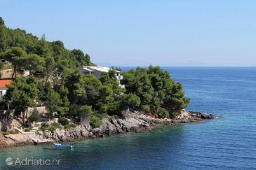 Uvala Torac, Hvar, Property 575 - Apartments blizu mora.