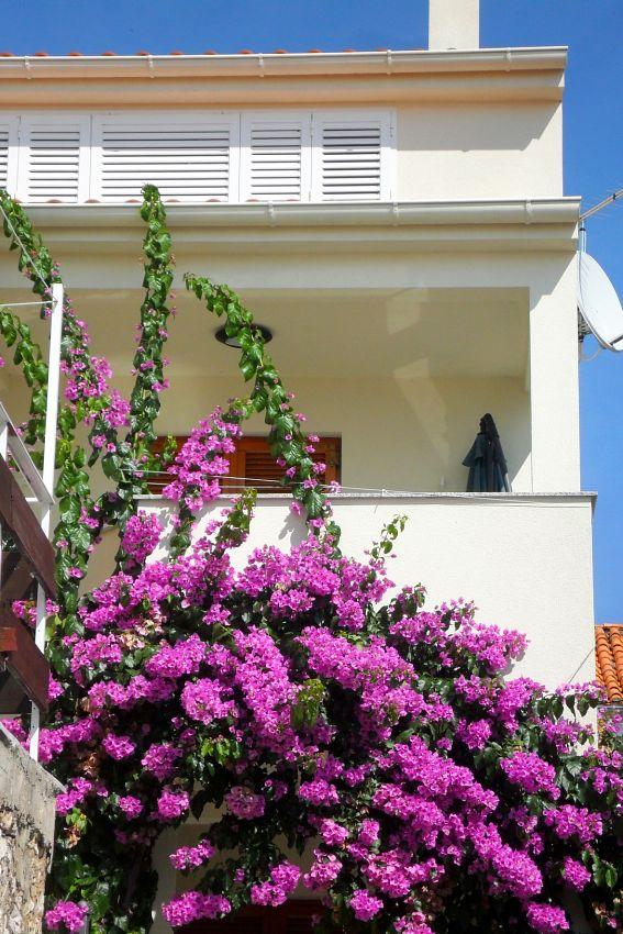 Apartmán na pláži v meste Zadar - Diklo - 5767