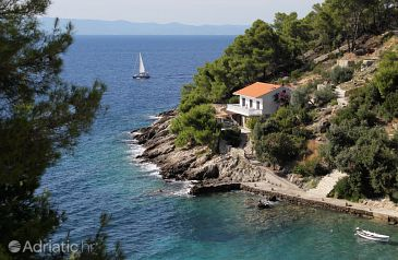 Property Uvala Torac (Hvar) - Accommodation 581 - Apartments near sea with pebble beach.