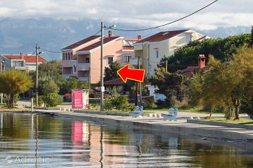 Property Zaton (Zadar) - Accommodation 5918 - Apartments near sea with sandy beach.