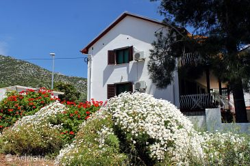 Property Zavala (Hvar) - Accommodation 594 - Apartments near sea with pebble beach.