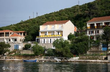 Property Polače (Mljet) - Accommodation 604 - Apartments and Rooms near sea.