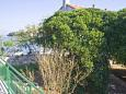 Terrace 1 - view - House K-6054 - Vacation Rentals Postira (Brač) - 6054