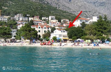 Property Baška Voda (Makarska) - Accommodation 6081 - Apartments near sea with pebble beach.