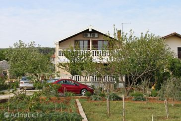 Property Posedarje (Novigrad) - Accommodation 6145 - Apartments in Croatia.