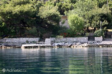 Property Prožurska Luka (Mljet) - Accommodation 617 - Vacation Rentals near sea.