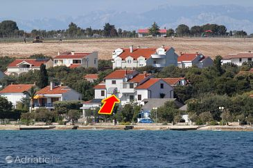 Property Petrčane (Zadar) - Accommodation 6259 - Apartments and Rooms near sea with pebble beach.