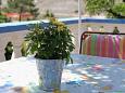 Terrace - Apartment A-6510-b - Apartments Vlašići (Pag) - 6510