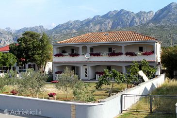 Property Seline (Paklenica) - Accommodation 6603 - Apartments with pebble beach.