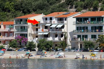 Property Podgora (Makarska) - Accommodation 6713 - Apartments near sea with pebble beach.