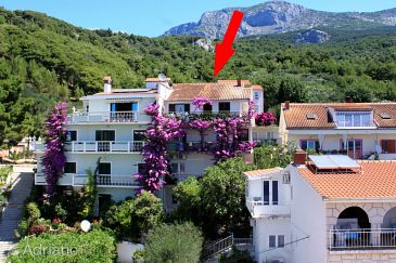 Property Podgora (Makarska) - Accommodation 6790 - Apartments and Rooms with pebble beach.