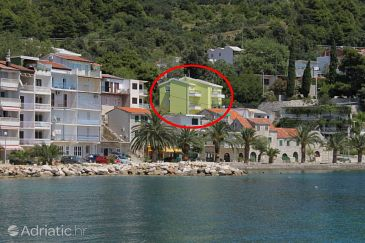 Property Živogošće - Porat (Makarska) - Accommodation 6876 - Apartments near sea with pebble beach.