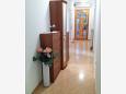 Hallway - Apartment A-7054-b - Apartments Novigrad (Novigrad) - 7054