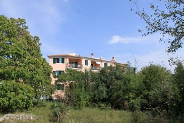 Property Rovinj (Rovinj) - Accommodation 7113 - Apartments with pebble beach.