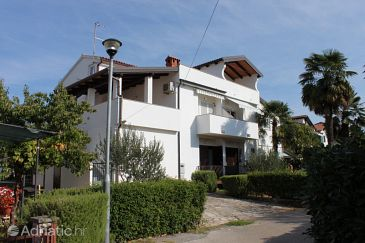 Property Novigrad (Novigrad) - Accommodation 7121 - Apartments with pebble beach.