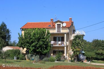Property Bašanija (Umag) - Accommodation 7149 - Apartments with pebble beach.