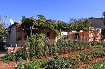 Property Valbandon (Fažana) - Accommodation 7285 - Apartments with pebble beach.