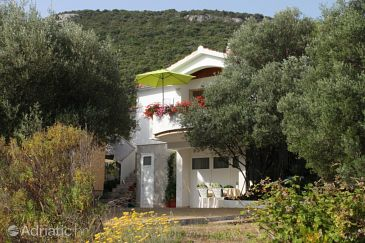 Property Luka (Dugi otok) - Accommodation 8131 - Apartments near sea.