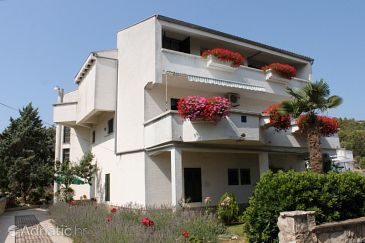 Property Dobropoljana (Pašman) - Accommodation 8312 - Apartments with pebble beach.