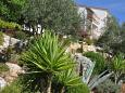 Courtyard Pasadur (Lastovo) - Accommodation 8351 - Apartments near sea.