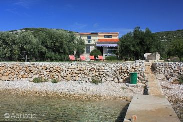 Uvala Soline, Pašman, Property 8482 - Vacation Rentals blizu mora with rocky beach.