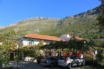 Mlini, Dubrovnik, Property 8542 - Apartments with pebble beach.