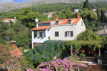 Property Dubrovnik (Dubrovnik) - Accommodation 8581 - Apartments and Rooms with pebble beach.
